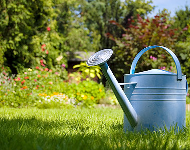 About Us property maintenance garden care garden maintenance